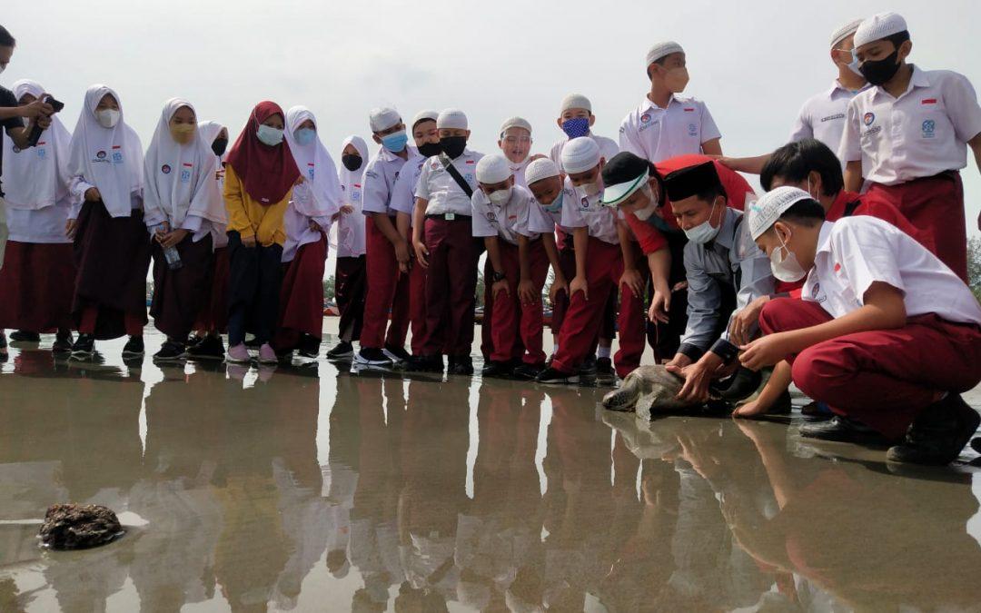Rihlah Edukasi Kelas 6 SDIT Al Hasanah 1 ke Penangkaran Penyu